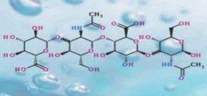molécule d'acide hyaluronique