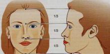 visage de femme face profil