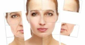 Processus de vieillissement de la peau